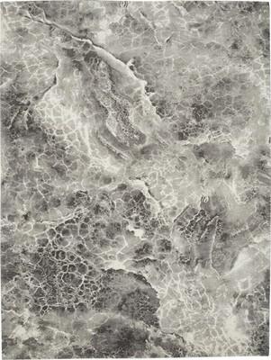 Nourison Gradient GDT06 Gray/Silver